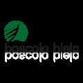 Logo Boscolo Bielo_Tavola disegno 1
